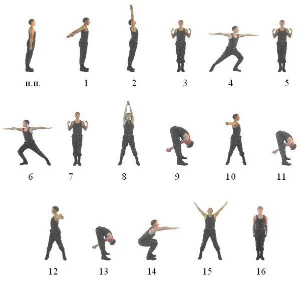 комплекс вольных упражнений 1 и 2