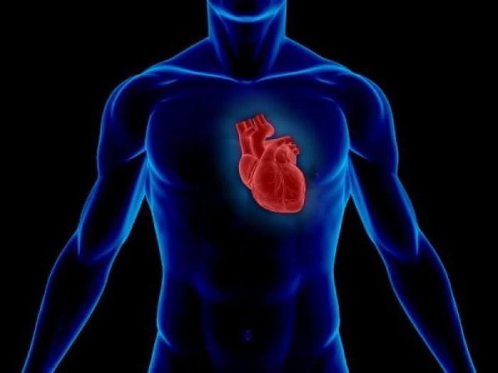 опухоли сердца классификация