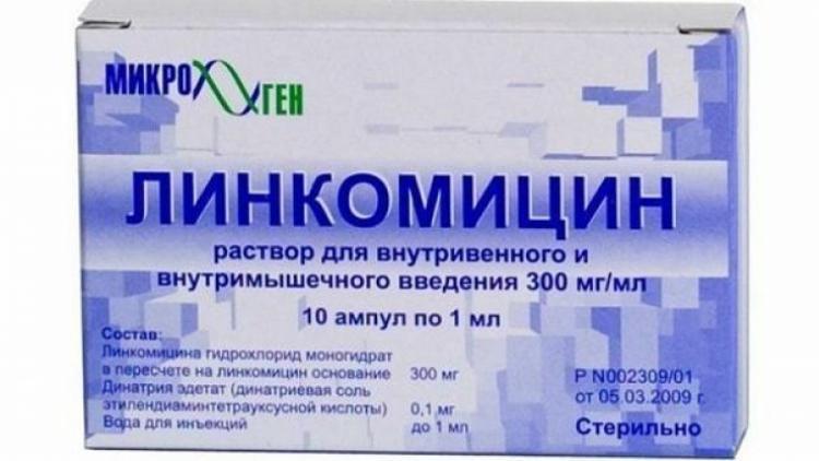 лечение пародонтоза десен