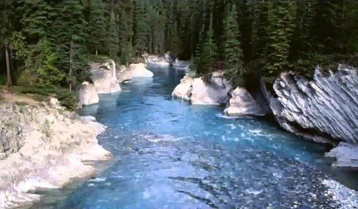 какое питание имеет большинство рек России