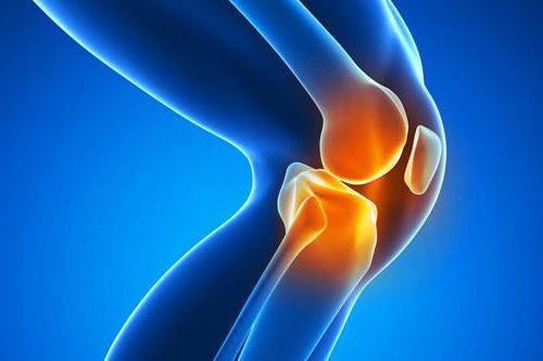 недифференцированный артрит симптомы