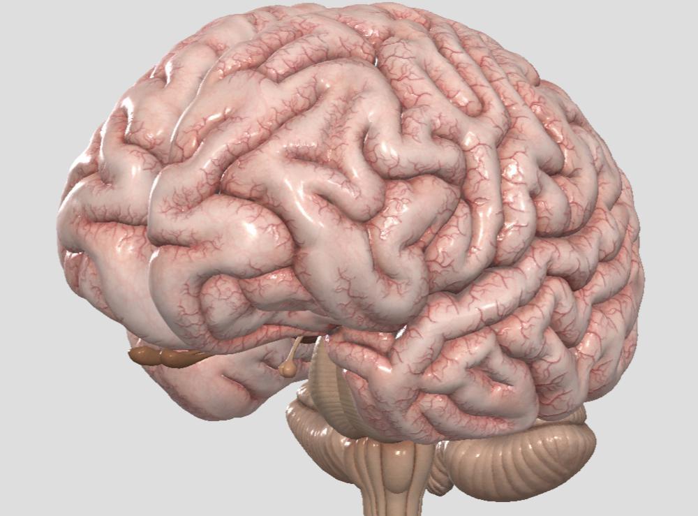 сотрясение головного мозга тяжелой степени