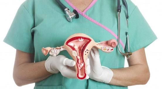 Операция по удалению миомы: назначение врача, алгоритм работы, время проведения, показания, подготовка