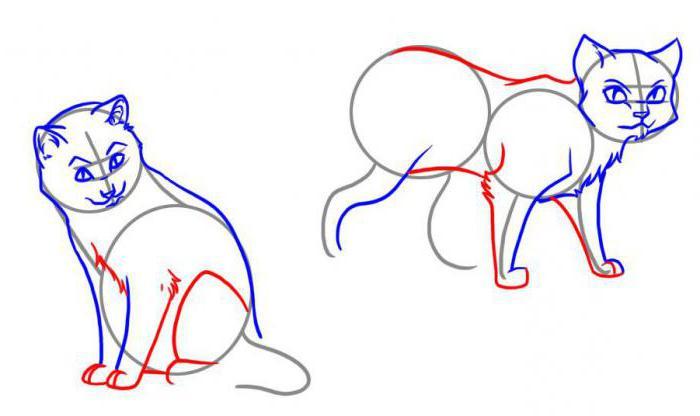 как рисовать котов воителей карандашом
