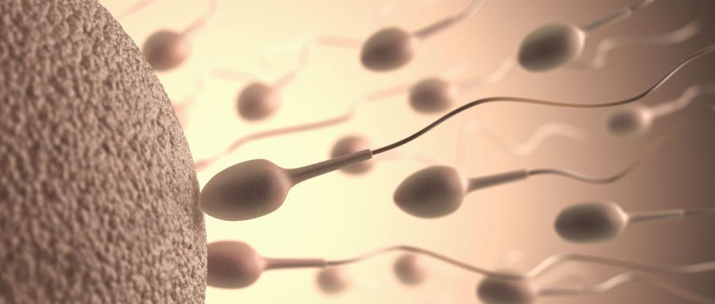 При повторных может остаться сперма
