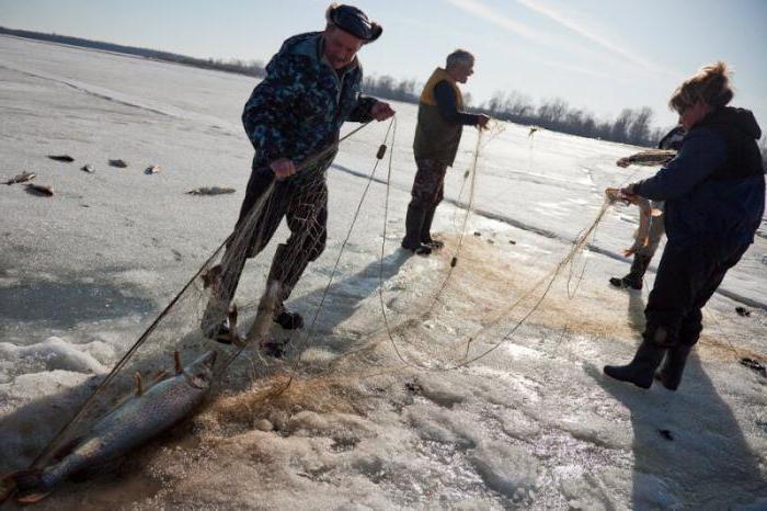 когда в казахстане можно ловить рыбу