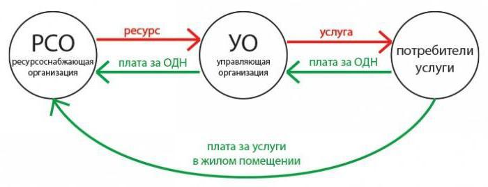 Кто разрабатывает должностные инструкции в организации на опо