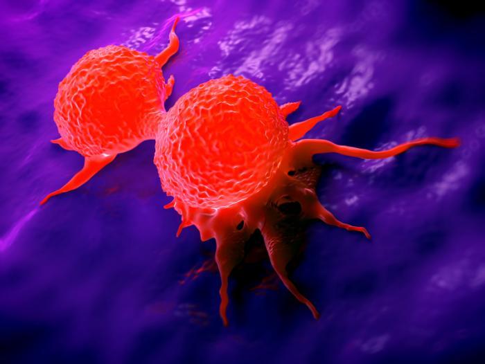 химиотерапия таксанами при раке молочной железы
