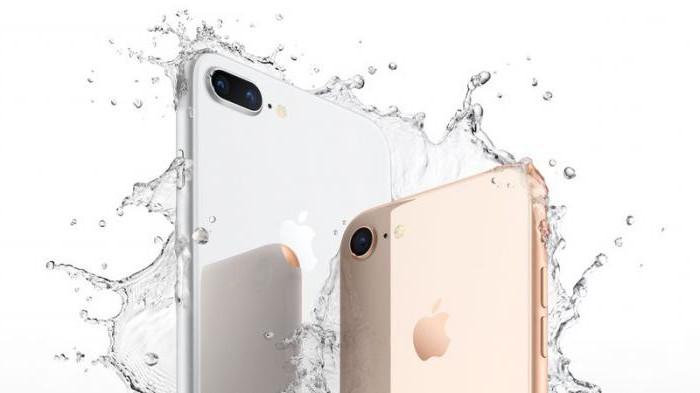 отрицательный отзыв apple store net ru