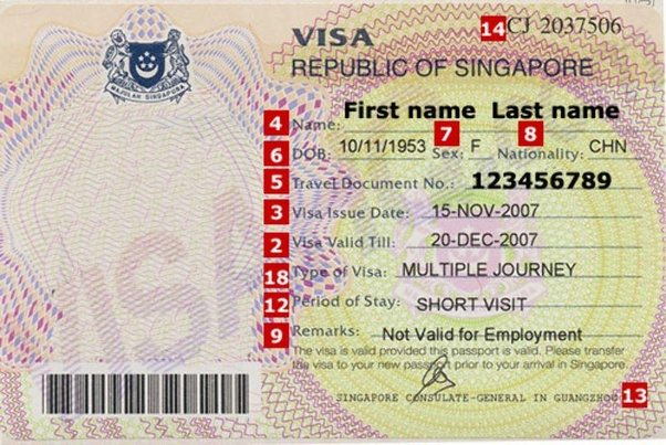 How to get a visa to Singapore on your own