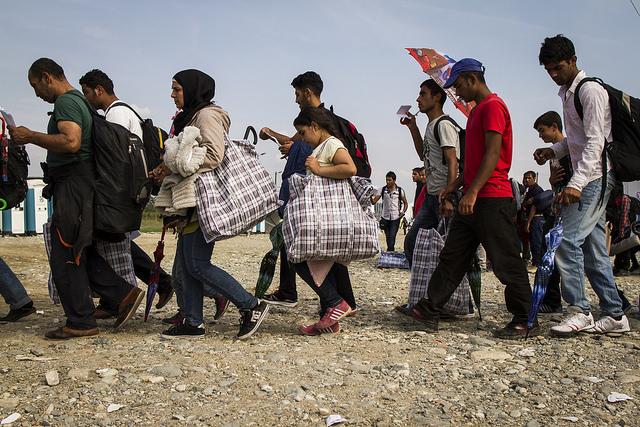 Трудовая миграция в США