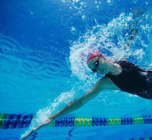 час плавания в бассейне