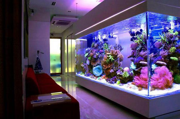 почему в аквариуме повышается температура