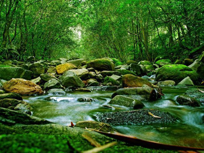 уровень воды в реках
