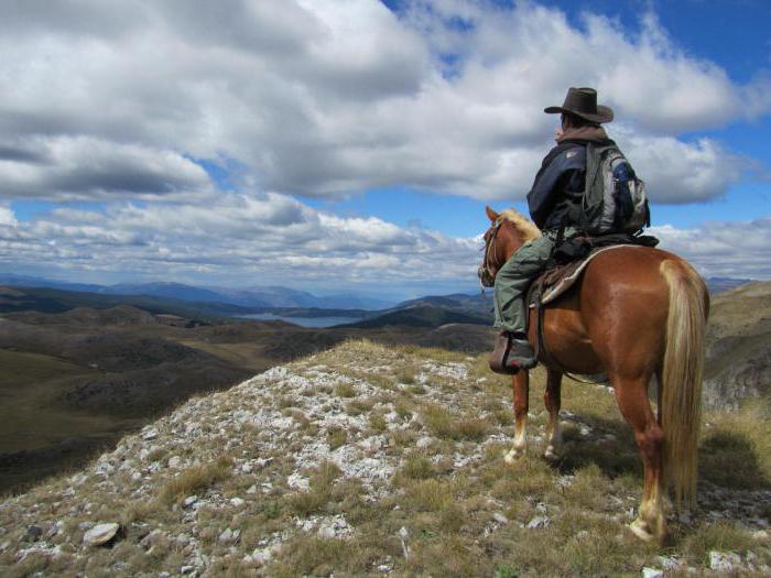 знакомства по интересам конный туризм