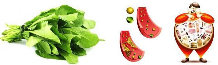 диета при атеросклерозе сосудов мозга