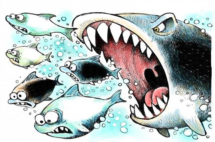 признаки рынка олигополии