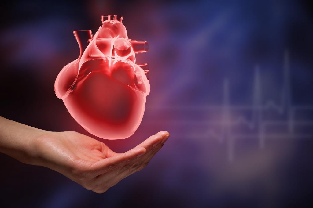 учащенное сердцебиение с похмелья что делать
