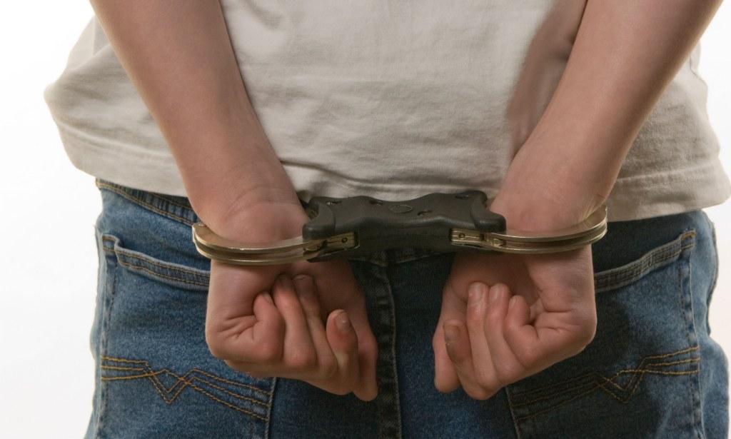 Преступность несовершеннолетних: причины, условия, характеристика правонарушей