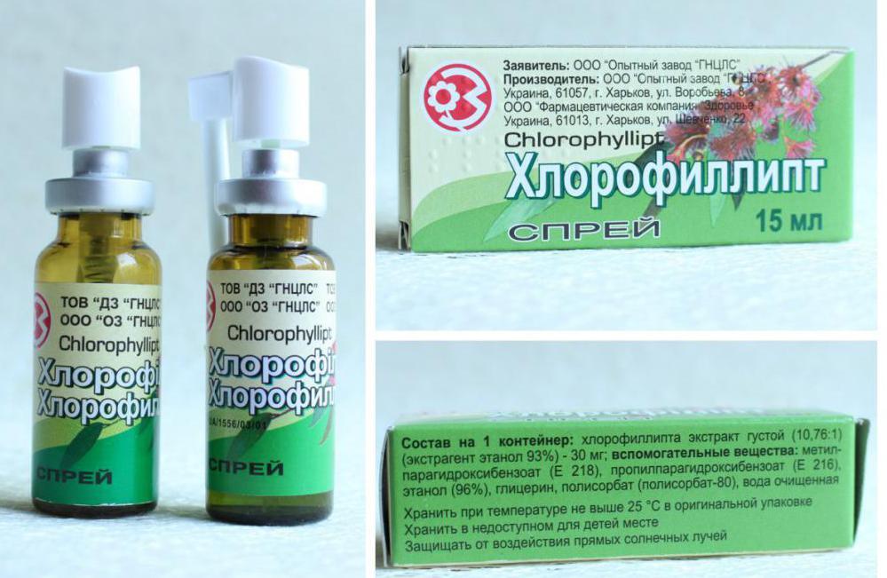 как разводить хлорофиллипт для полоскания