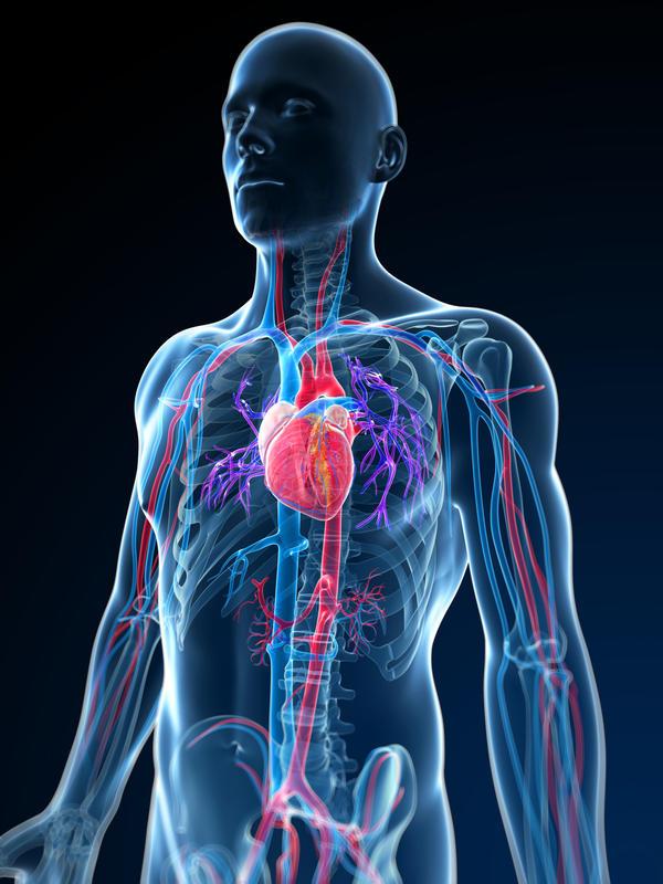 сильное сердцебиение при нормальном давлении