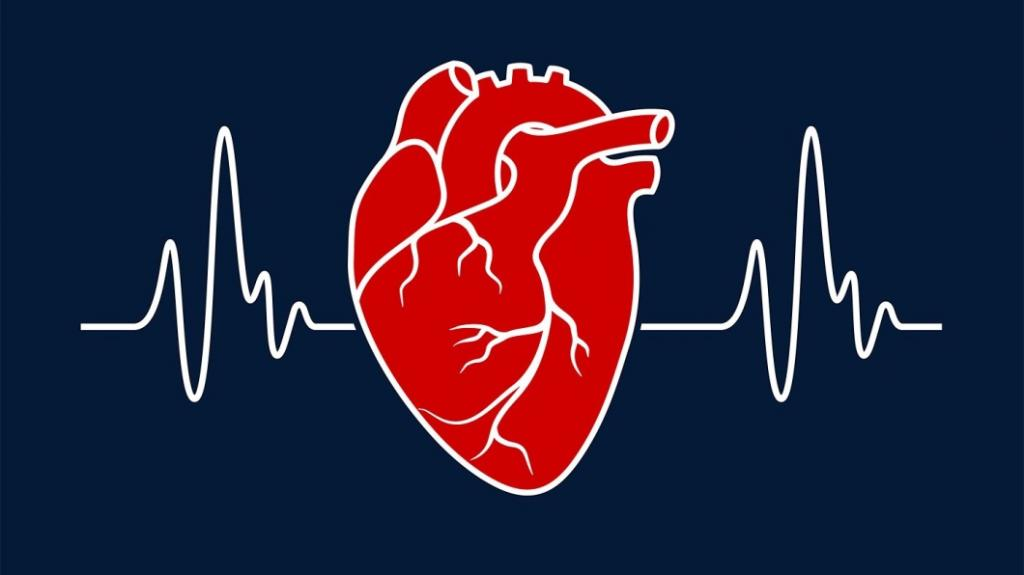 методы диагностики сердечно сосудистых
