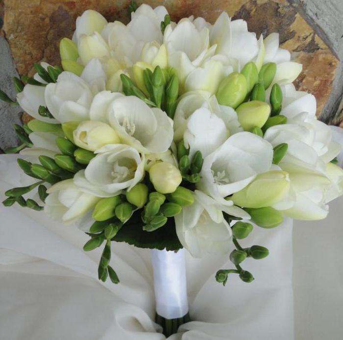 Белый свадебный букет и другие цветовые сочетания