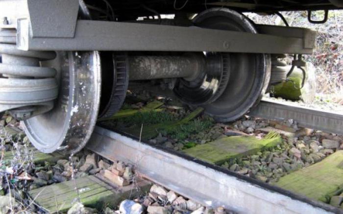 сбитые поездом