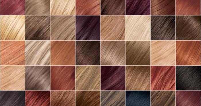 Краски для волос Syoss: палитра цветов, фото