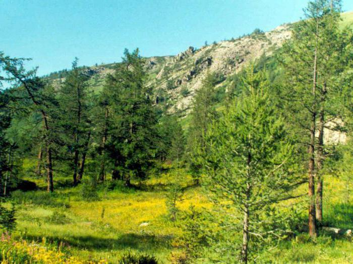 заповедники и национальные парки казахстана