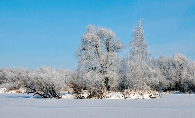 Климат зимы в картинках