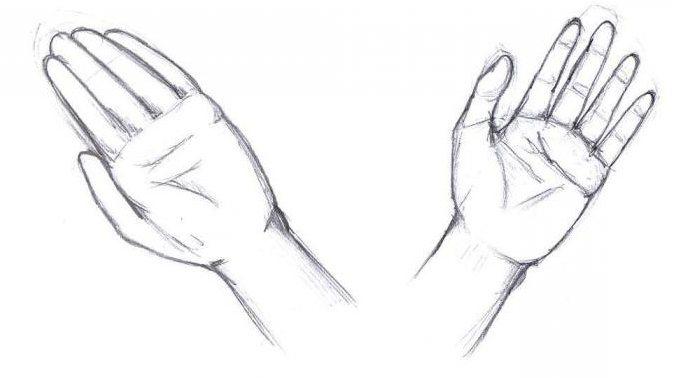 нарисовать кисти рук поэтапно