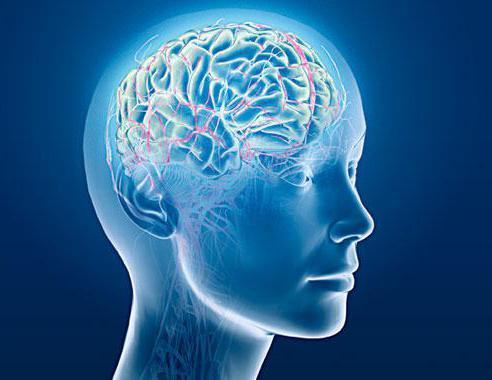расстройства восприятия галлюцинации