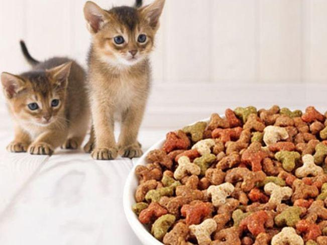 Роял Канин гипоаллергенный корм для кошек Royal Canin