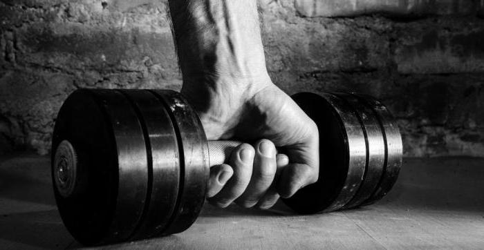 спортивные витамины maxler отзывы