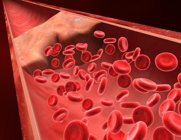 сдать анализ крови гемостаз