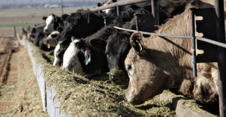 как составить рацион питания для коровы