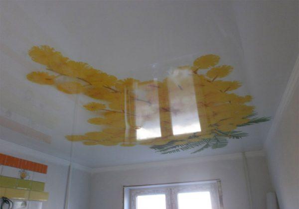 ceiling applique