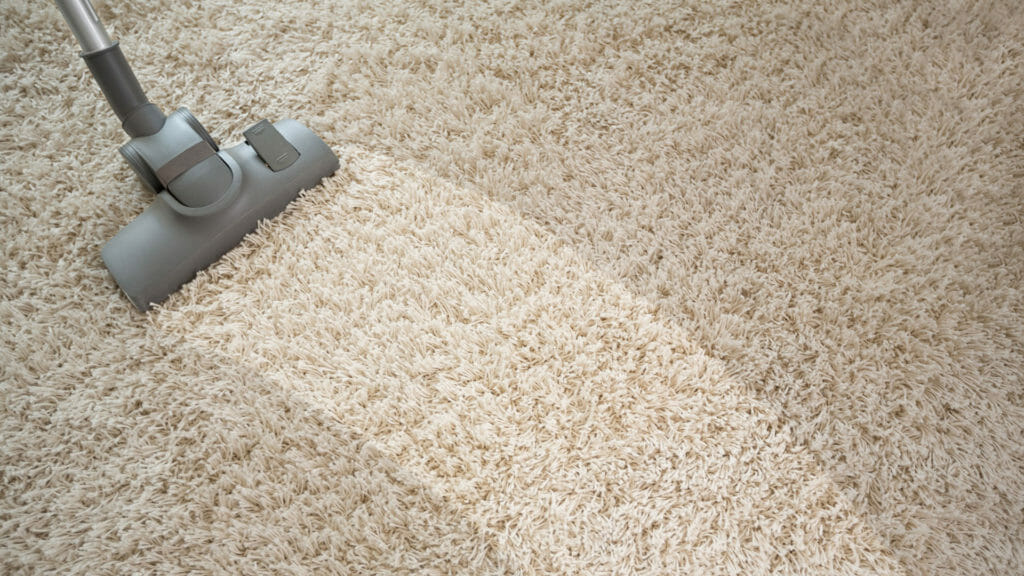 carpet cleaning soda