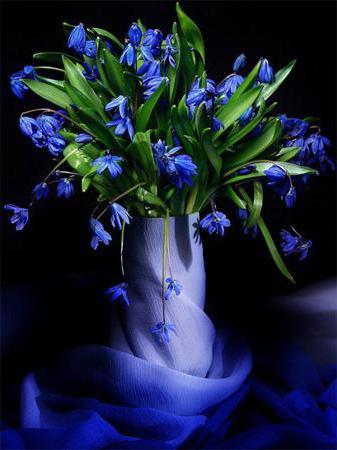 Что значит во сне синий цвет