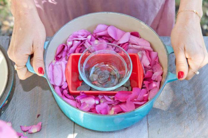 Как сделать из лепестков розы розовую воду