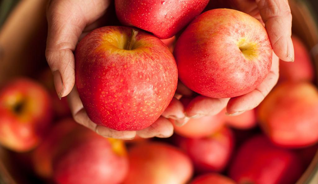Диета 5 яблоки