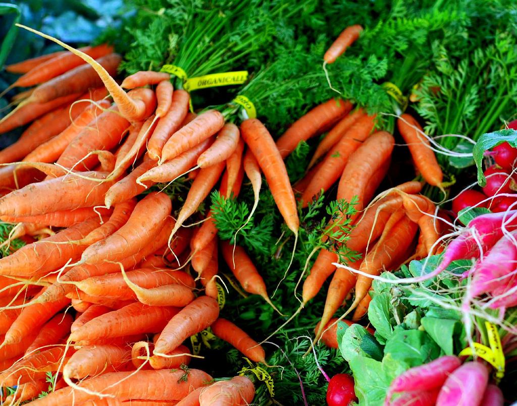 Вредна ли морковь при похудении