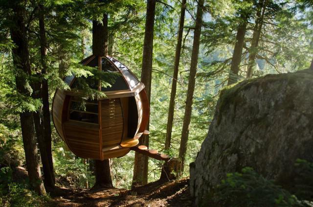 Как строить шалаш на дереве