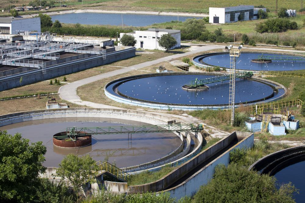 the bio treatment of waste water using aquatic invertebrates