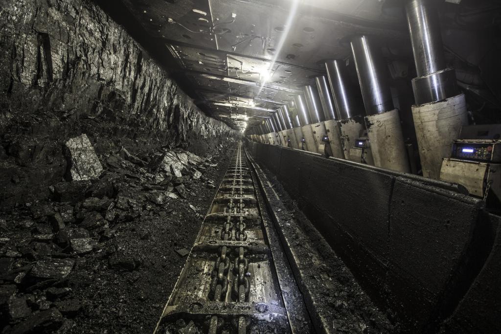 ходе патрулирования, фото шахта уголь антуриум характеризует