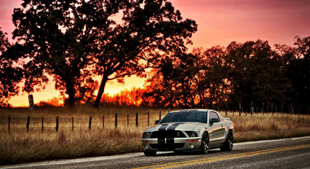 auto brand Ford