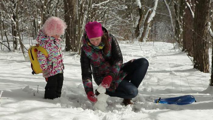 женские зимние костюмы для прогулок с детьми большие размеры