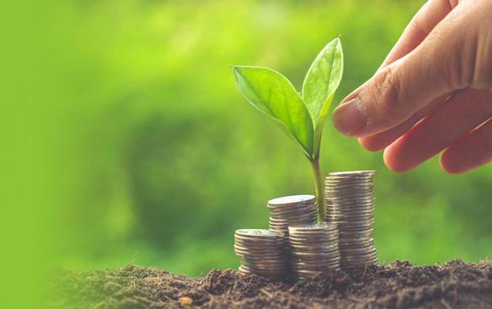 Рейтинг МФО по надежности вкладов
