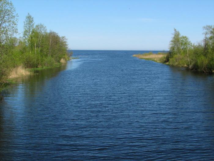 моря реки и озера россии